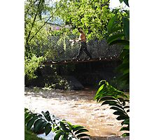 Jungle Bridge - Puente De La Selva Photographic Print