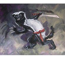 Ninja Honey Badger Photographic Print