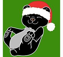 Christmas Black Bear with Red Santa Hat Photographic Print