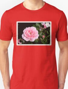 You Look to Me Like Misty Roses ~ Bobby Darin Unisex T-Shirt