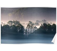 Fog Backlit Tree Line Silhouette in the Valley, Cades Cove, Smoky Mountain National Park Poster
