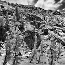 Ten Lakes Basin - Yosemite N.P. by Rodney Johnson