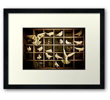 Pigeon Holed Framed Print