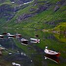 Conquest to Paradise. Visit Lofoten.   is one of Norway&#x27;s most authentic traditional fishing villages. july 2012. by Andy Brown Sugar. by AndGoszcz