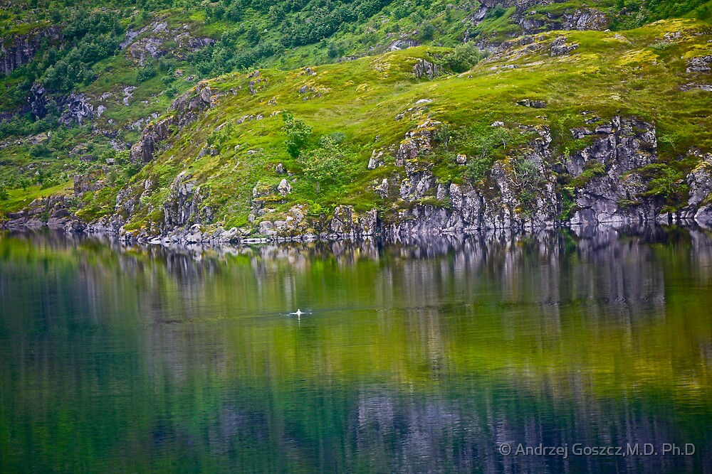 7 ★★★★★. My features Art that I LOVE!! Meravilioso Belvedere .  Å . Lofoten .Norway. july 2012. by Andy Brown Sugar. Featured Work !!! Islands , Islands , Islands . by © Andrzej Goszcz,M.D. Ph.D