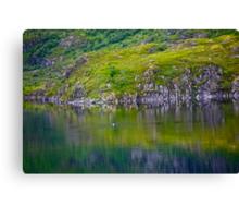 7 ★★★★★. My features Art that I LOVE!! Meravilioso Belvedere .  Å . Lofoten .Norway. july 2012. by Andy Brown Sugar. Featured Work !!! Islands , Islands , Islands . Canvas Print