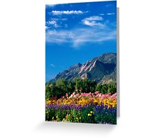 Flatirons and Flowers Greeting Card