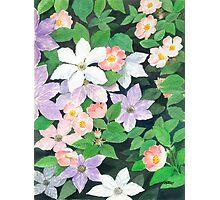 BEAUTIFUL FLOWER ART Photographic Print