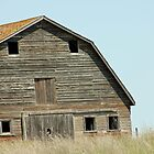 Desolate Barn by Tjfarthing