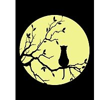 The Cat And The Moon (v2) Photographic Print