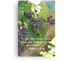 """John 15:1""  by Carter L. Shepard Canvas Print"