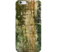 Abstract natural wall art iPhone Case/Skin