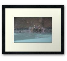 """Hippopotamus""  by Carter L. Shepard Framed Print"
