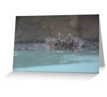 """Hippopotamus""  by Carter L. Shepard Greeting Card"