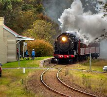 Steaming South by Terry Everson