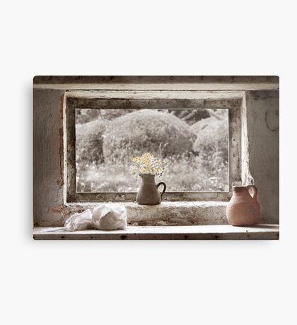 Flowers In The Window Metal Print