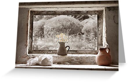 Flowers In The Window by Patricia Jacobs CPAGB LRPS BPE4