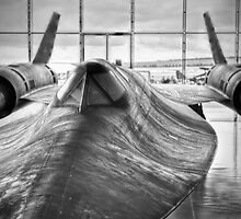 SR 71 Blackbird by Delfino