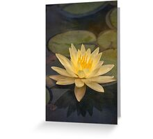 Pale yellow lily Greeting Card