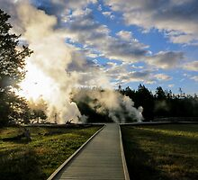 Geyser Steam, Yellowstone by Philip Kearney