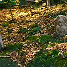 Old Stones by lorenzoviolone