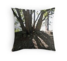 Oak and its Shadow Throw Pillow