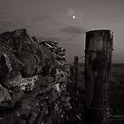 Stone and Wood in the Moon Light by Simon R. Court
