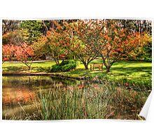 Secret Garden  # 6 -  Mount Wilson, NSW Australia - The HDR Experience Poster