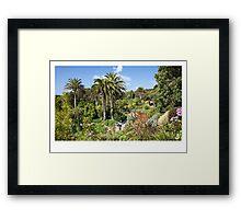 Tresco Gardens Framed Print