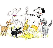 Dog park by Tessie Dowling