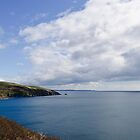 South Cornwall Coast by Simon R. Court
