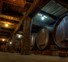 Winery Cellar by NBoersma