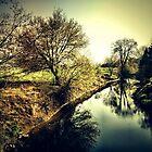 alzette river 11 by Diana Calvario