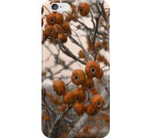 Hawthorn iPhone Case/Skin