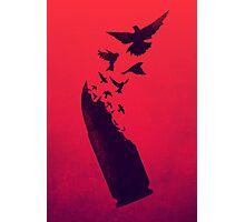 Bullet Birds Photographic Print