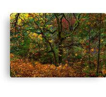 Spirit of Leaves Canvas Print