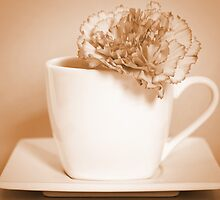 Carnation in Teacup, Sepia by MelissaSue