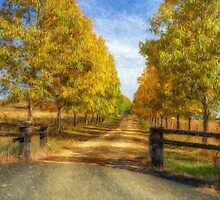 Country Roads Take Me Home - Uralla NSW - The HDR Experience by Philip Johnson