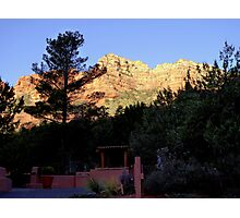 Canyon Pines Photographic Print
