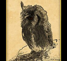 Owl iPhone Case by Moonlake