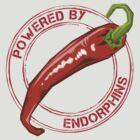 Endorphin Power by Robert Cross