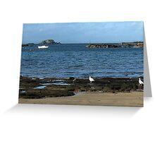 136 - LAMB ISLAND SEEN FROM NORTH BERWICK  (D.E. 2010) Greeting Card