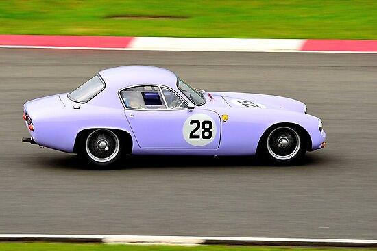 Lotus Elite No 28 by Willie Jackson