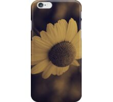 Leucanthemum vulgare iPhone Case/Skin