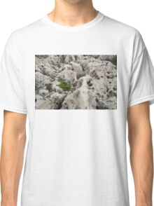 Life on Bare Rock - Weathered Limestone and Little Green Survivors Classic T-Shirt