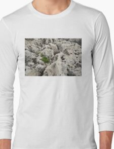 Life on Bare Rock - Weathered Limestone and Little Green Survivors Long Sleeve T-Shirt