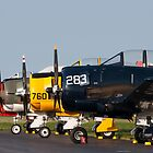Quartet of T-28 by Tim Gumz