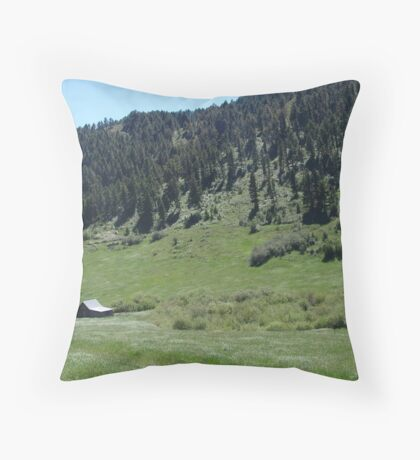 BARN IN A FIELD OF DAISIES Throw Pillow
