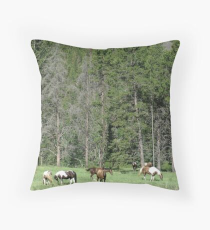 PACK STRING HORSES ON MAIN BOULDER CANYON ROAD Throw Pillow