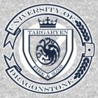 University of Dragonstone solid by ChoqueFrontal